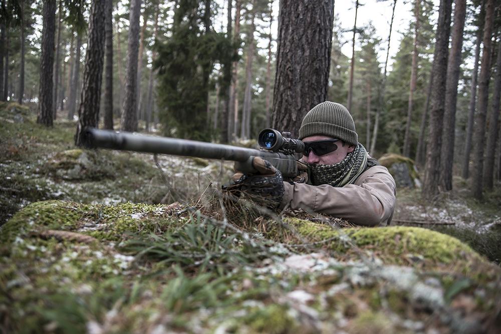 Dark Fox i Eskilstunaskogen. Foto: Hanna